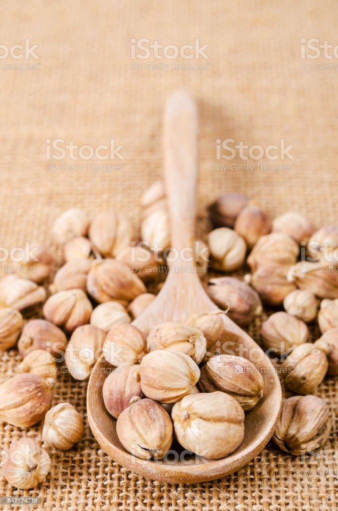 Best Cardamom stock photo