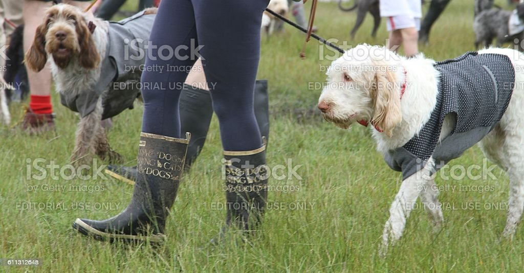best dressed dog and owner competition at Eroica festival stock photo