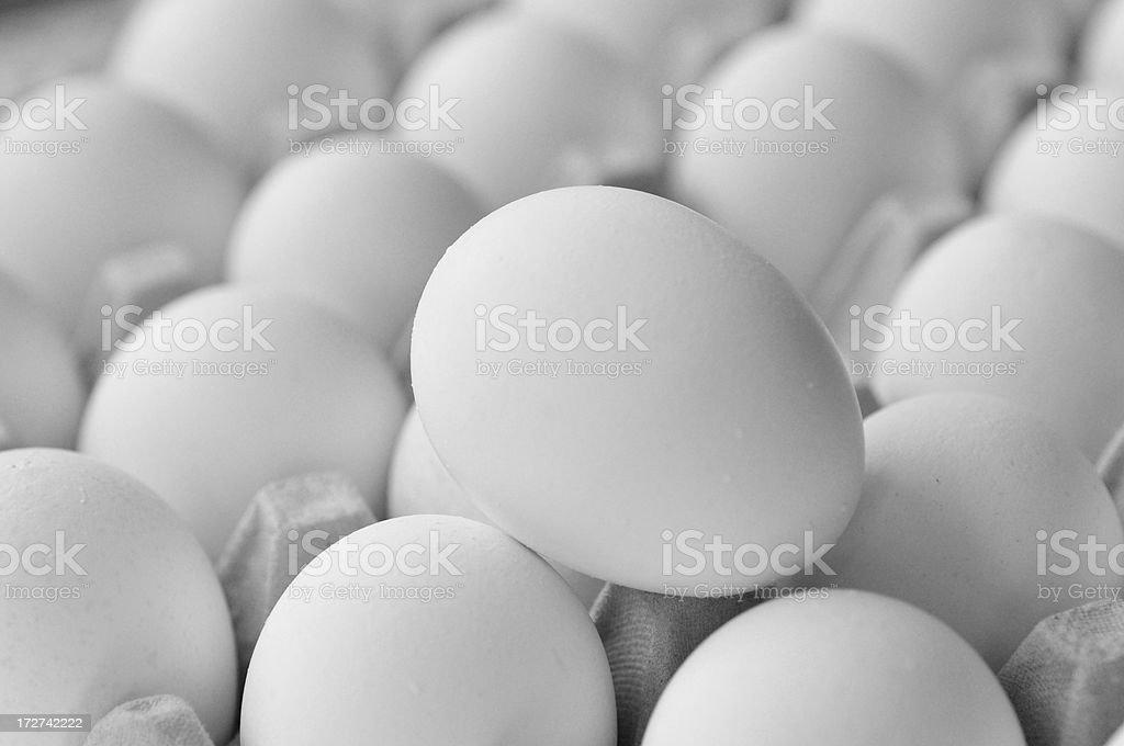 Best Egg stock photo
