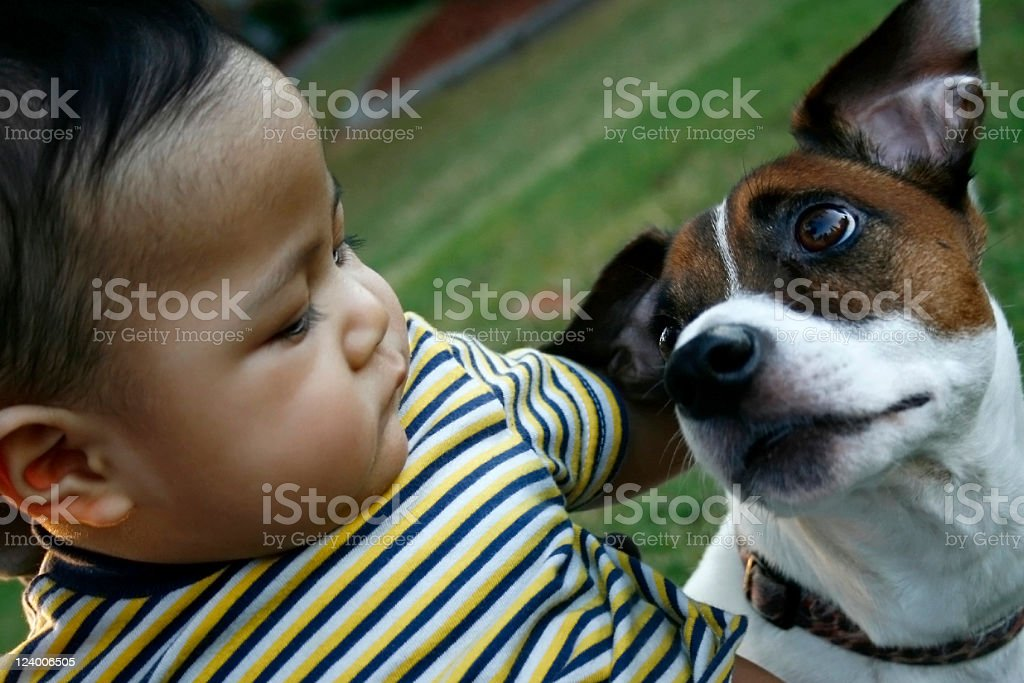 Best friend royalty-free stock photo