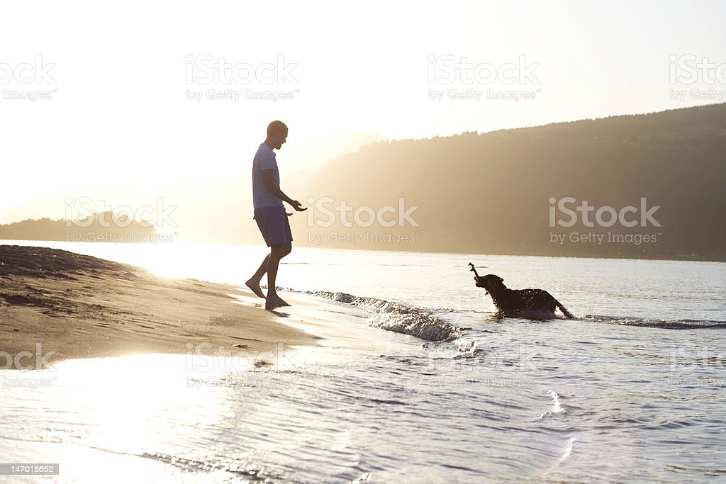 Best friends at sunset royalty-free stock photo