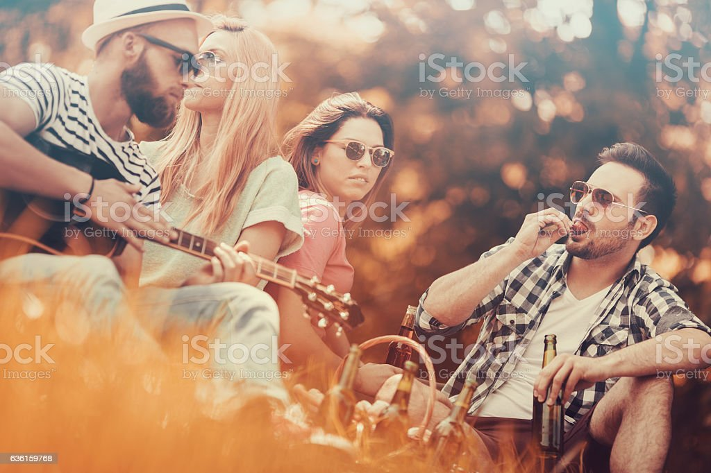 Best friends enjoying picnic together stock photo