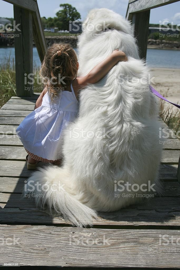 Best Friends. Great Pyrenees. stock photo