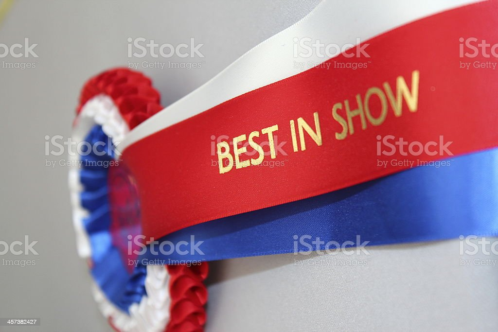 Best In Show stock photo