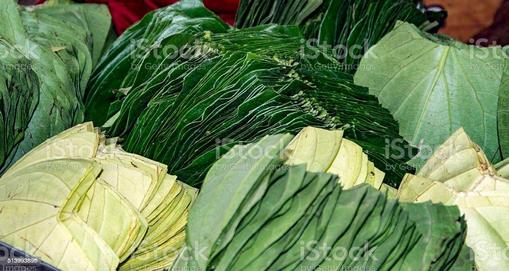 Betel leaves on sale stock photo