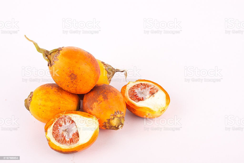 Betel nut is used in industrial textile dyes stock photo