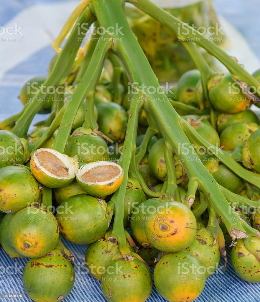 Betel Nuts.A medicinal plant species stock photo