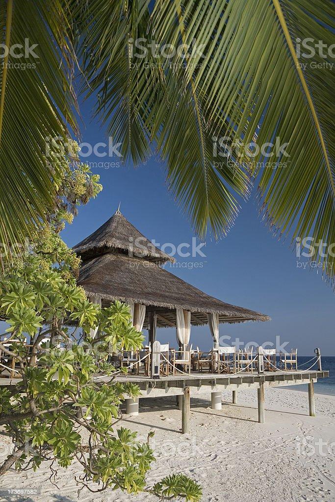between palms stock photo