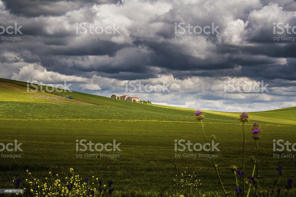 Between Puglia and Basilicata: rural landscape spring. - ITALY - stock photo