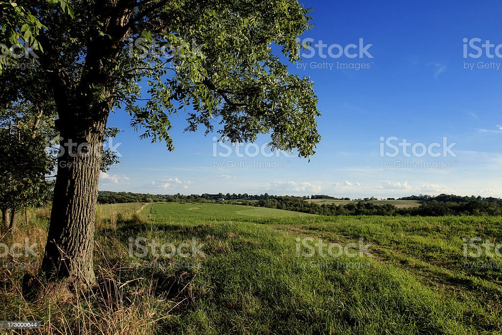Beutiful country landscape stock photo