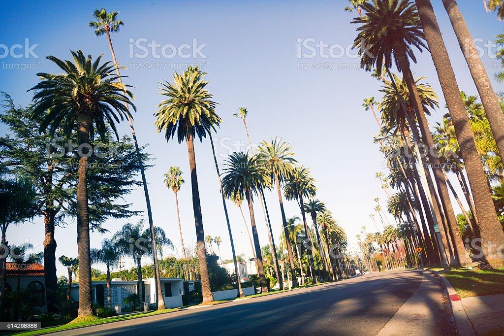 Beverly Drive street stock photo