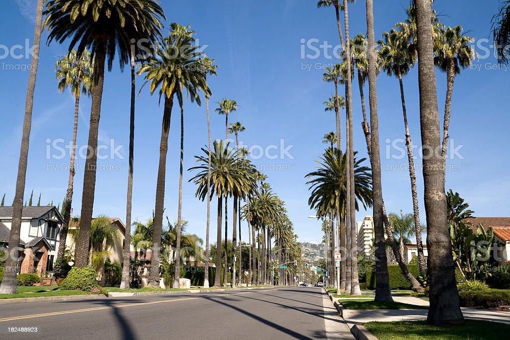 Beverly Hills neighborhood royalty-free stock photo