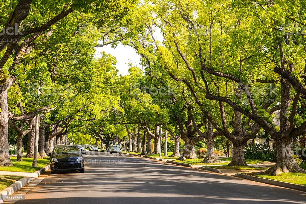 Beverly Hills Street, California, USA stock photo