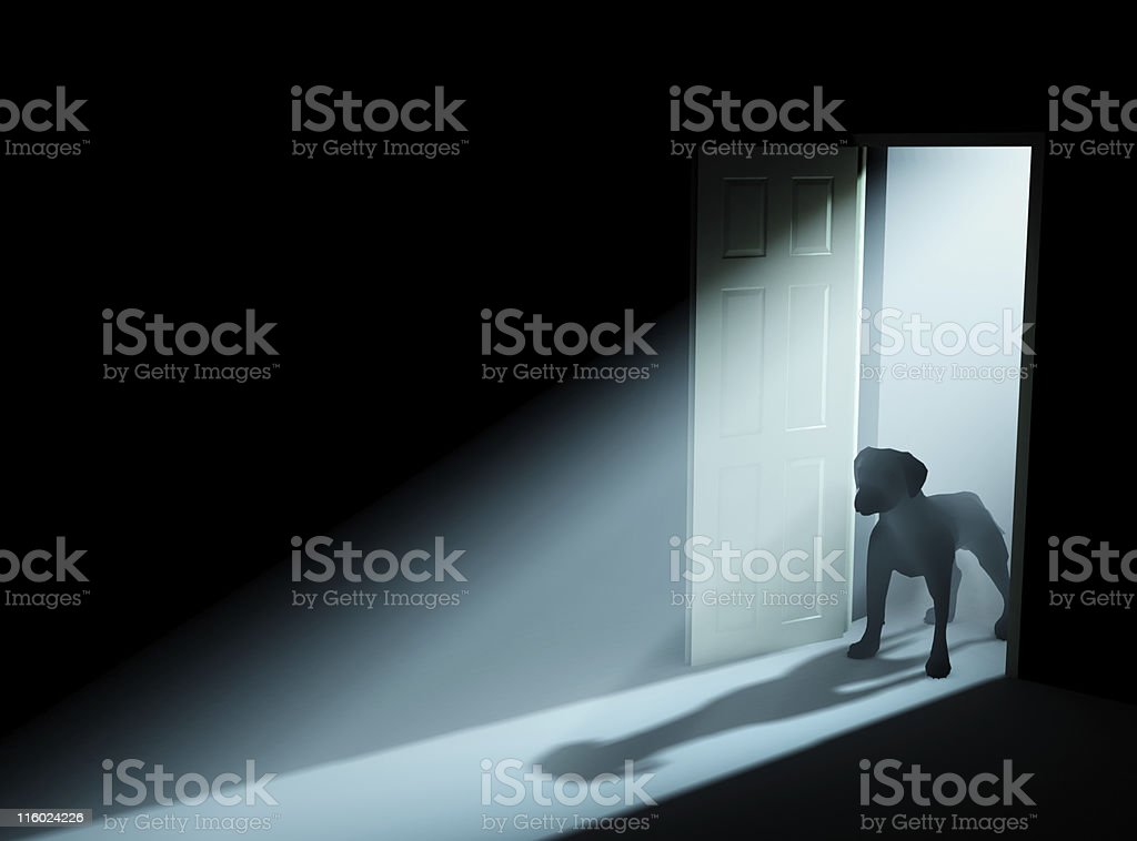 Beware of the dog stock photo