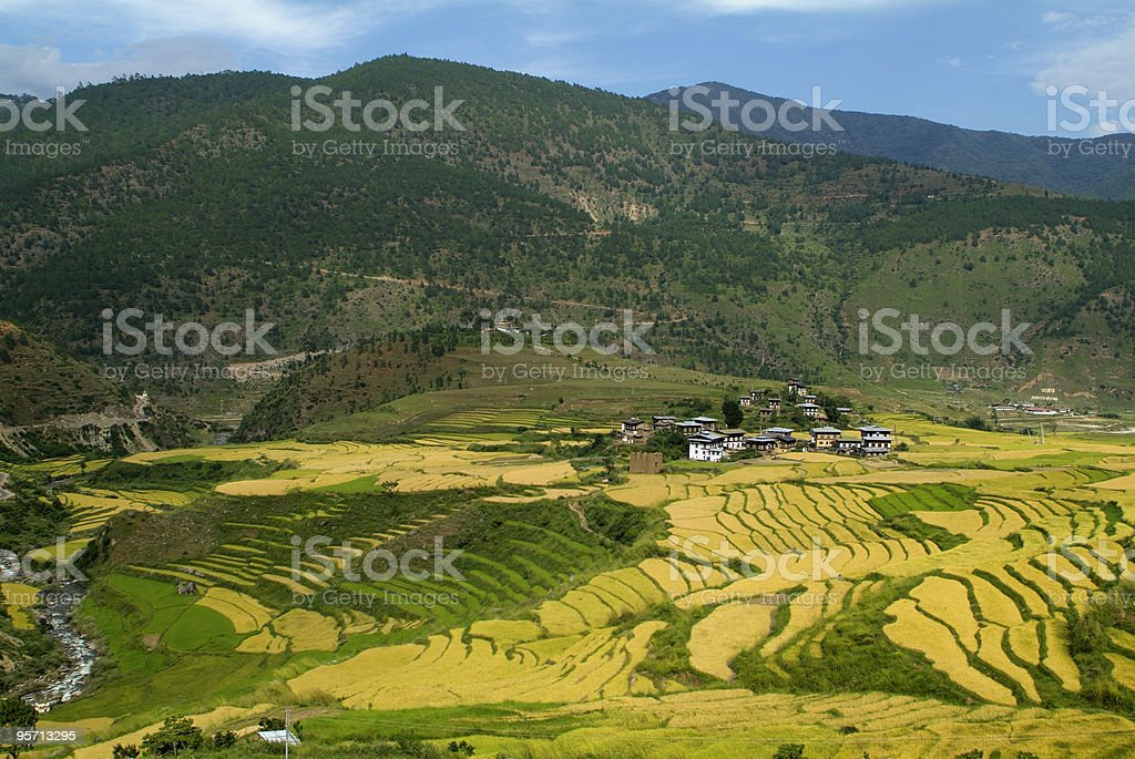 Bhutan, Punakha stock photo