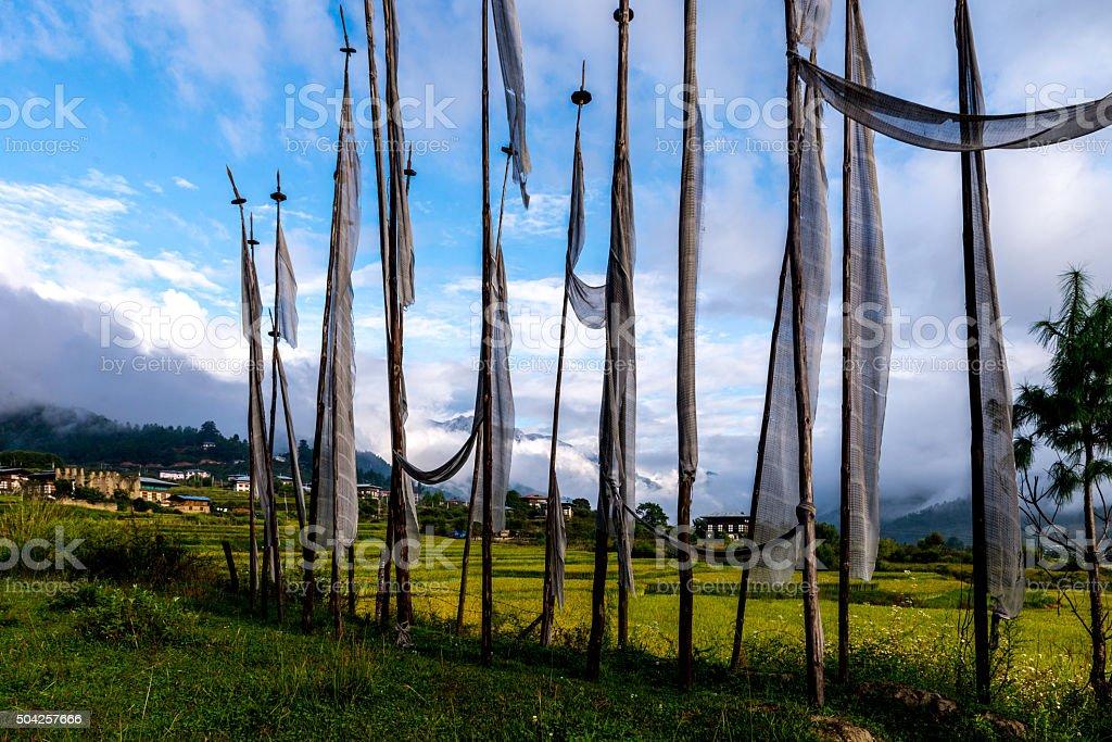 Bhutan Rice Fields, Paro Valley Sep 2015 stock photo