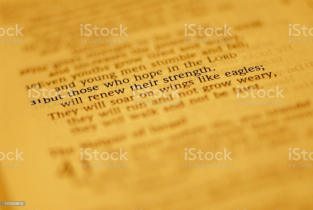Bible Closeups - Eagles' Wings stock photo