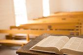 Bible in Primitive Church
