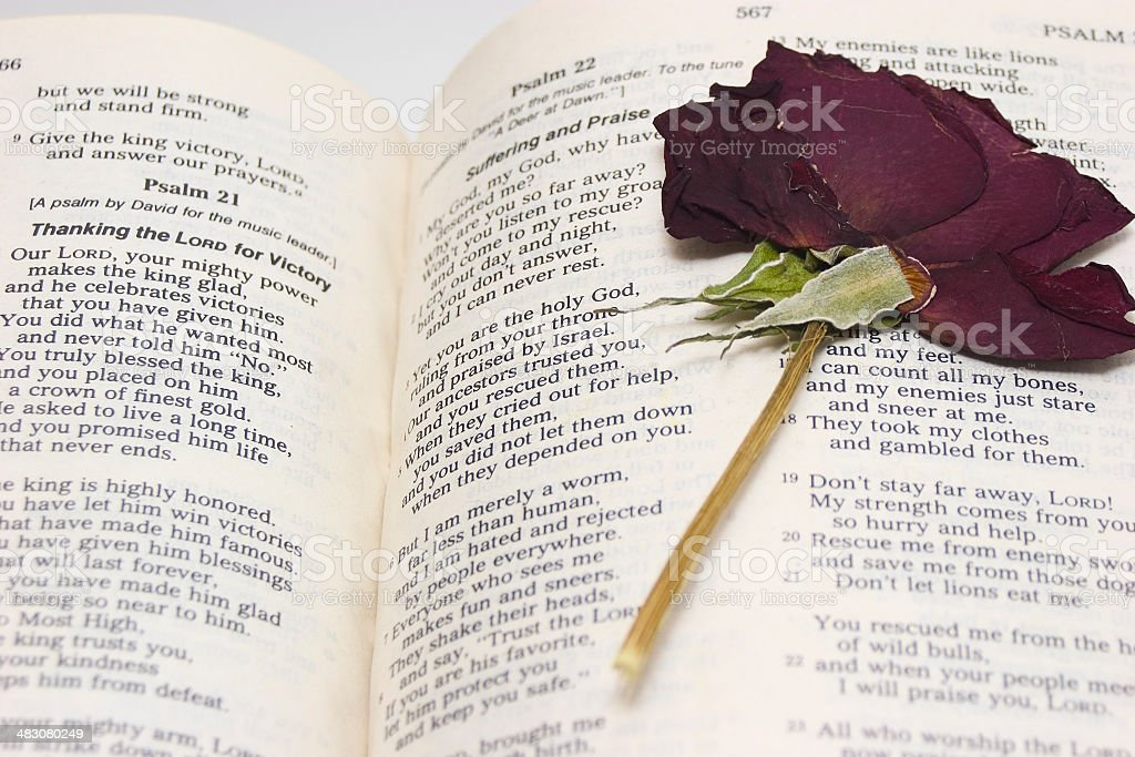 Bible Pages stock photo