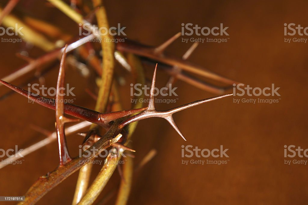 Bible Series (ca 1870) Close-up Crown of Thorns royalty-free stock photo