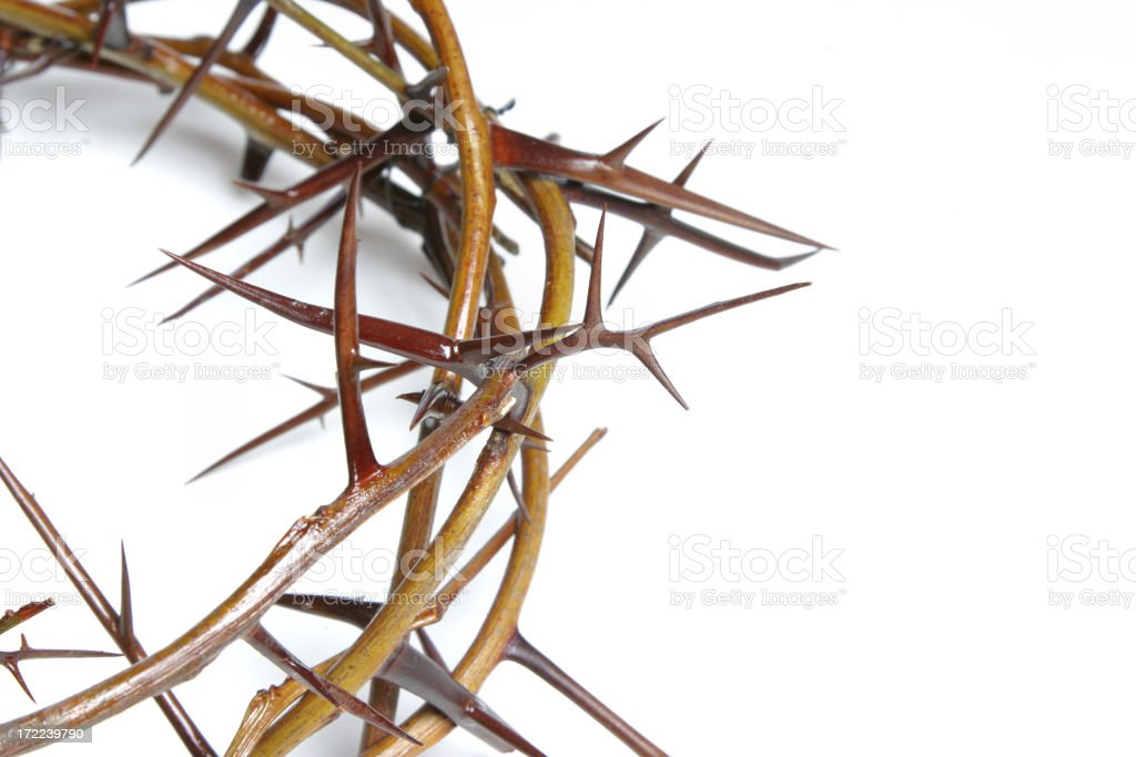 Bible Series Crown of Thorns (with copyspace) stock photo