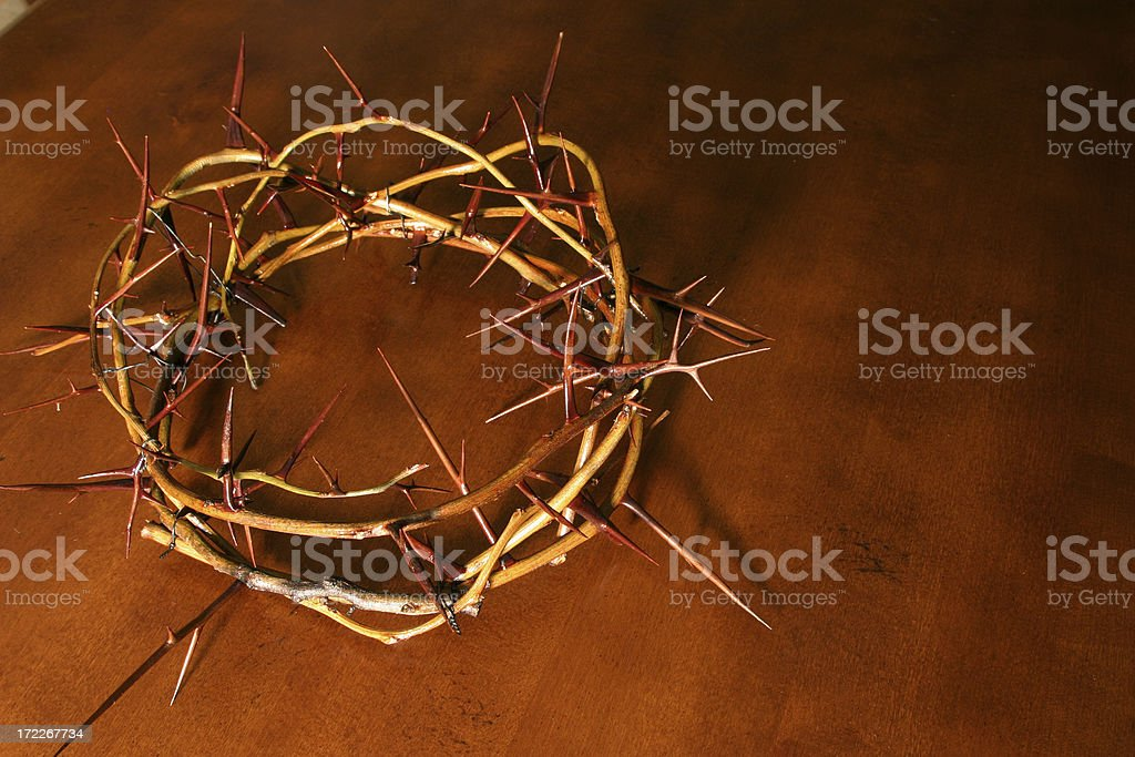 Bible Series Crown of Thorns (with copyspace) royalty-free stock photo