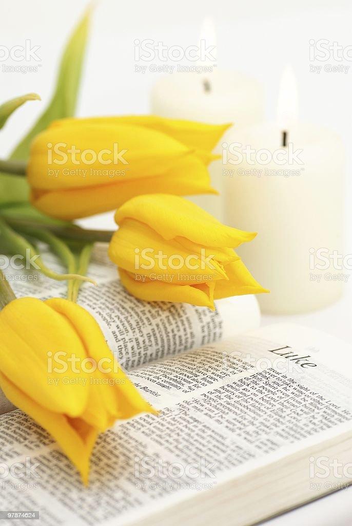 Bible still life royalty-free stock photo