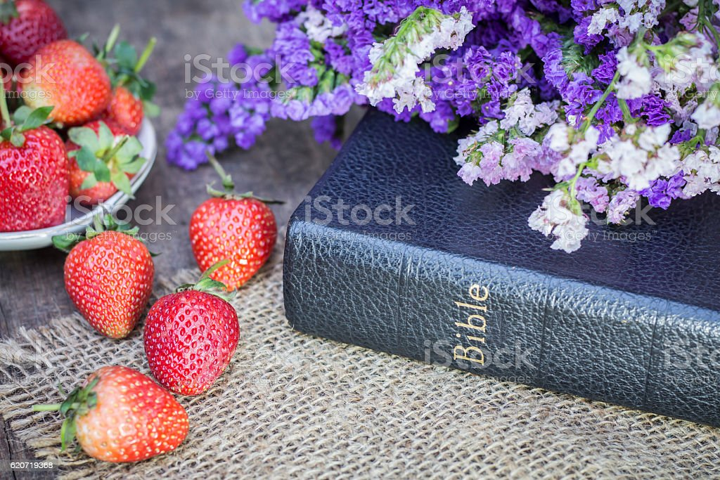 bible with colorful flower and strawberry stock photo