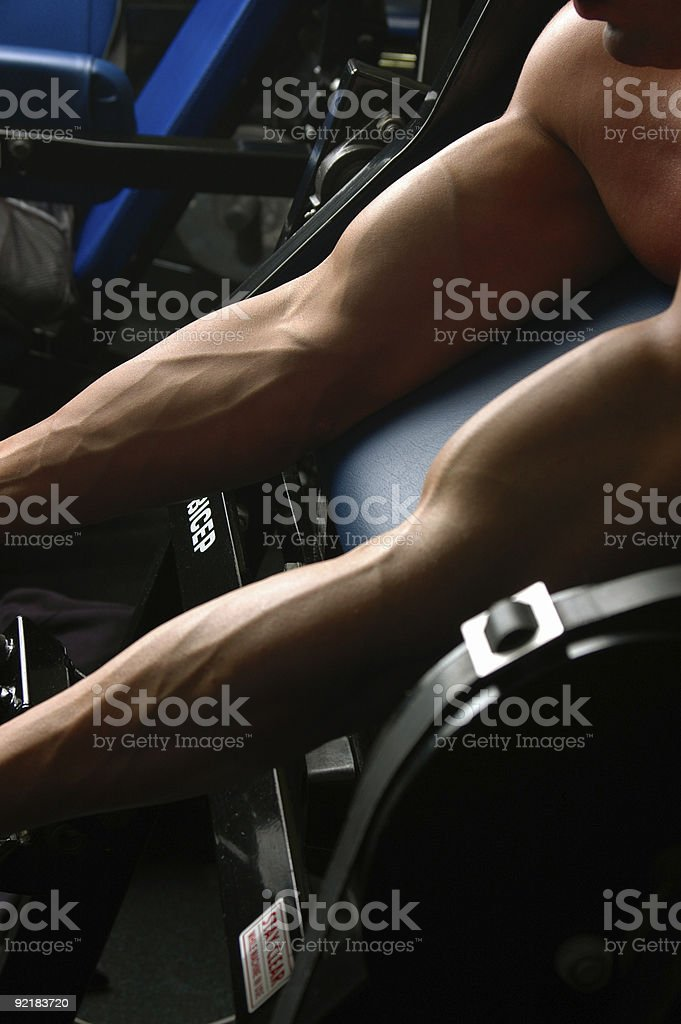 Bicep royalty-free stock photo