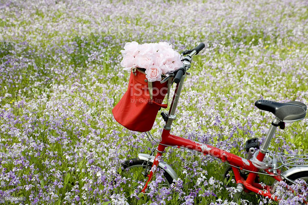 bicycle and flowers royalty-free stock photo