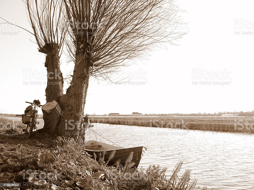 bicycle, boat, pollard willow and canal in Holland royalty-free stock photo