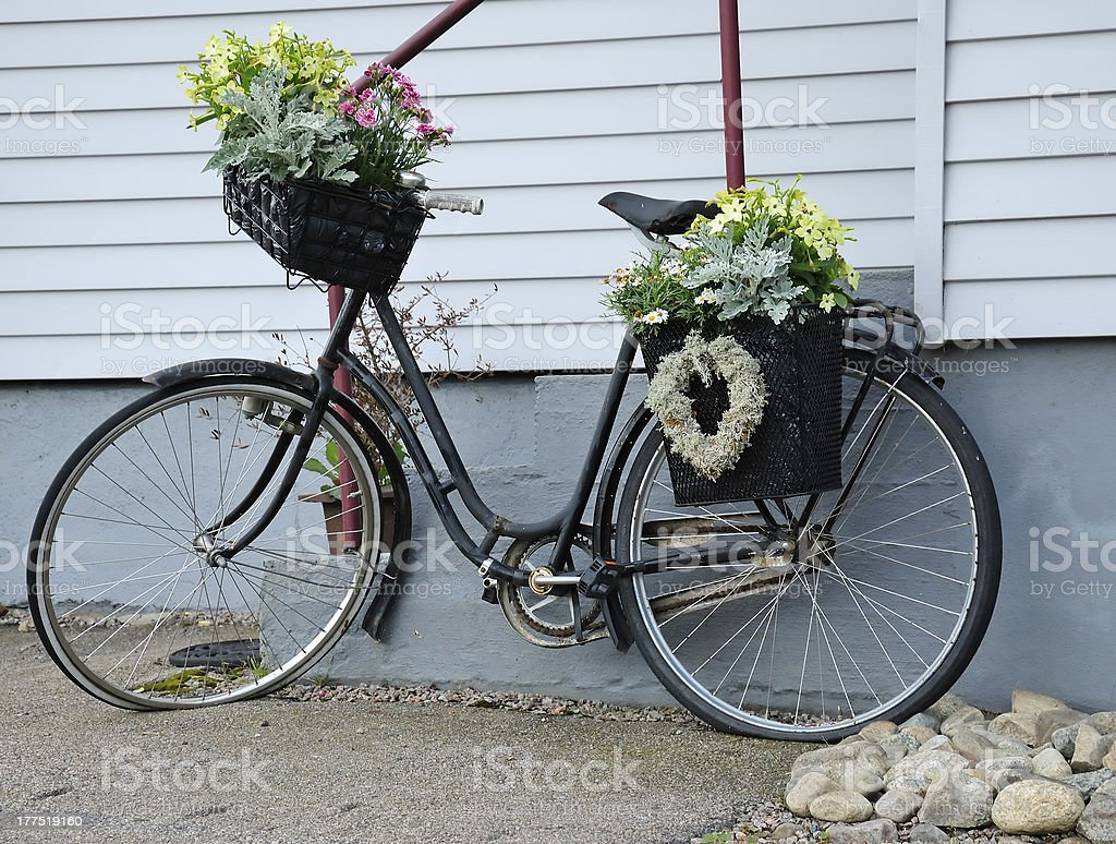 Bicycle full with flowers royalty-free stock photo