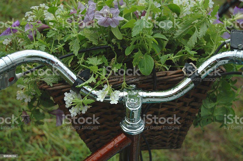 Bicycle Handlebars with Basket royalty-free stock photo