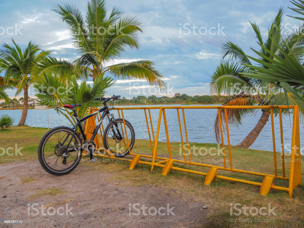 bicycle in park and blue sky,water and tree stock photo