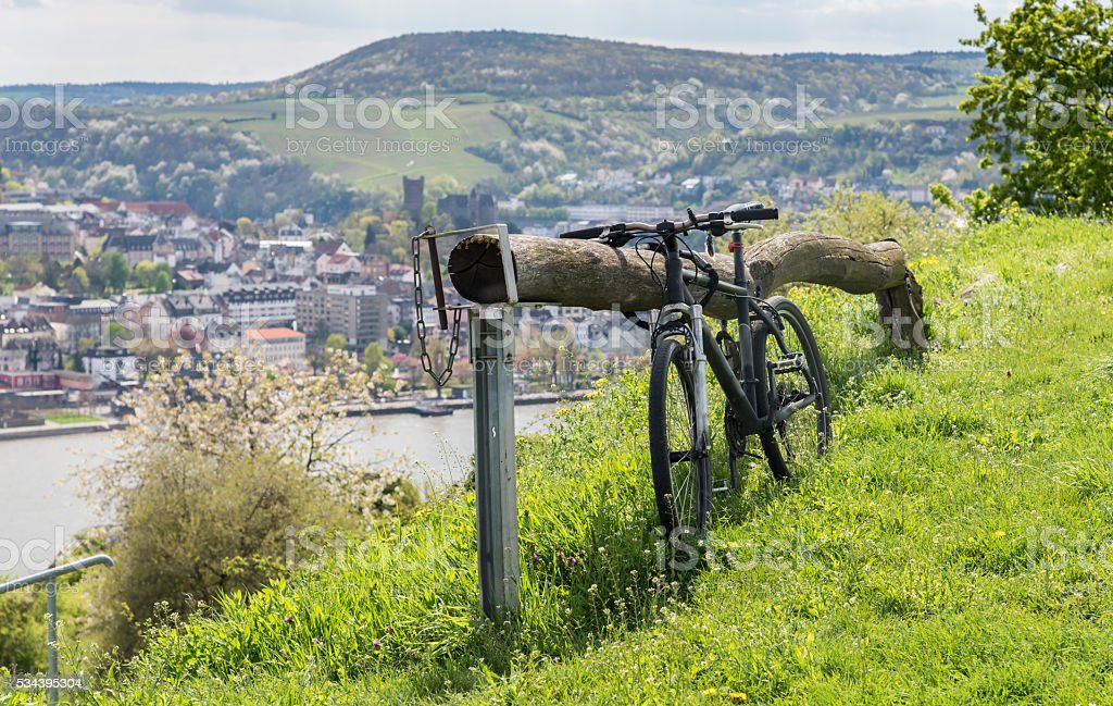 Bicycle in winery stock photo