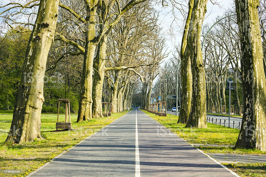 Bicycle lane in park stock photo