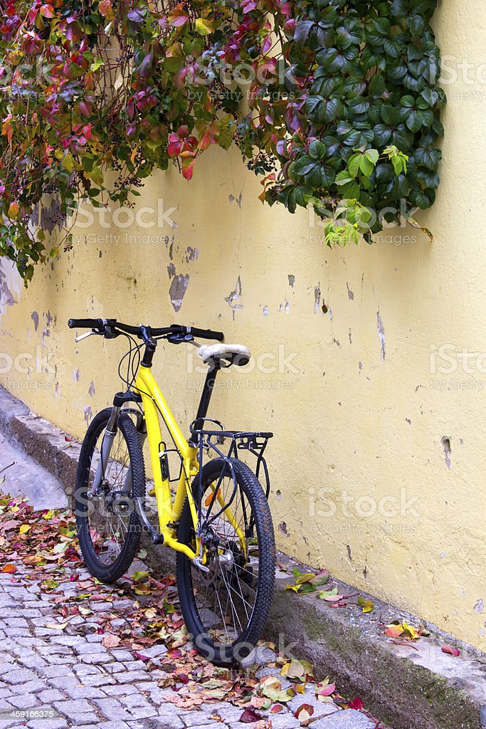 Bicycle Leaning Against Wall stock photo