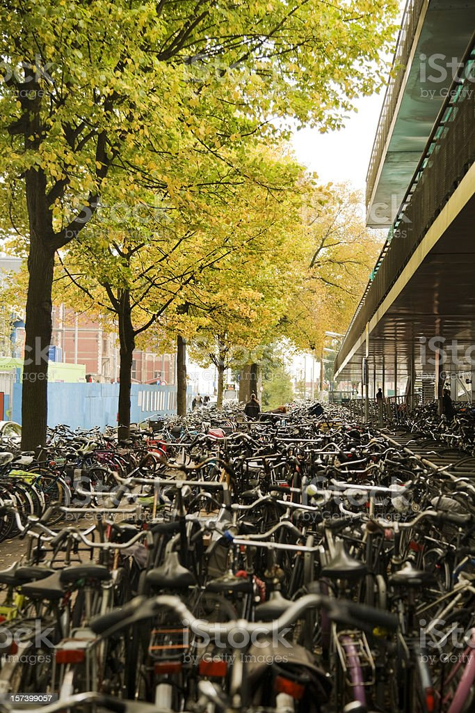 Bicycle Madness - Amsterdam royalty-free stock photo