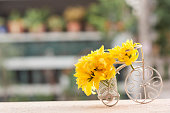 Bicycle model and yellow flower, Selective focus.