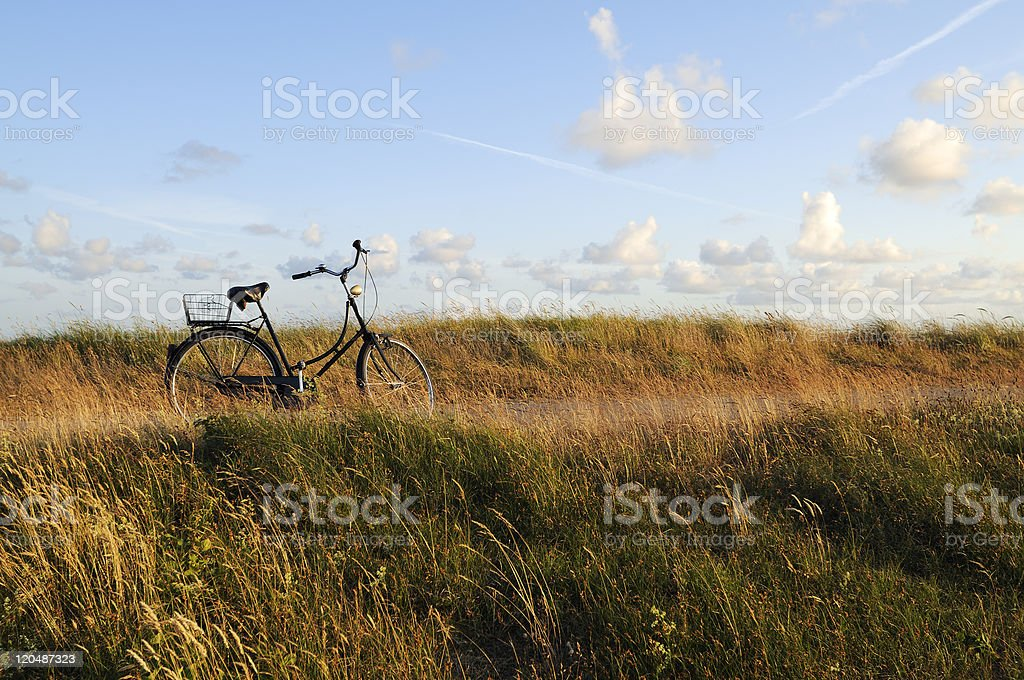 Bicycle on a coastal boardwalk royalty-free stock photo