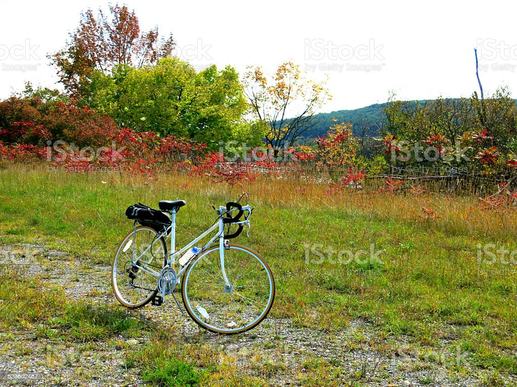 Bicycle Parked with Kickstand in front of Pretty Fall Foliage stock photo
