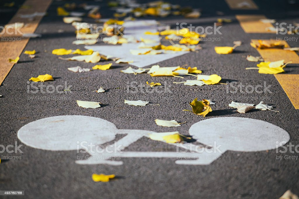 Bicycle path with an indicator on the street. stock photo