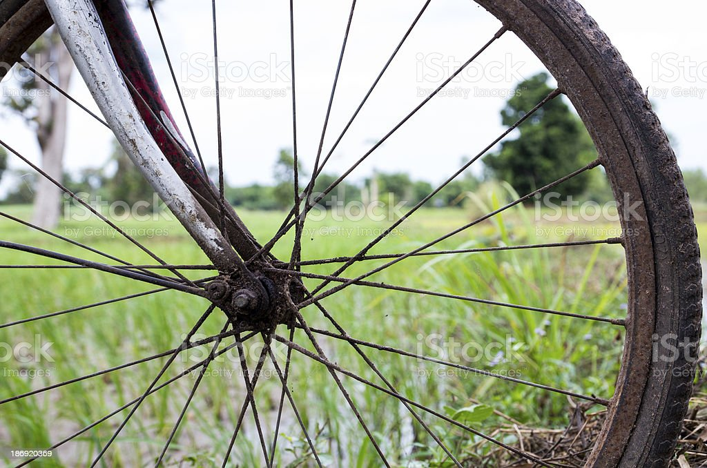 Bicycle wheel royalty-free stock photo