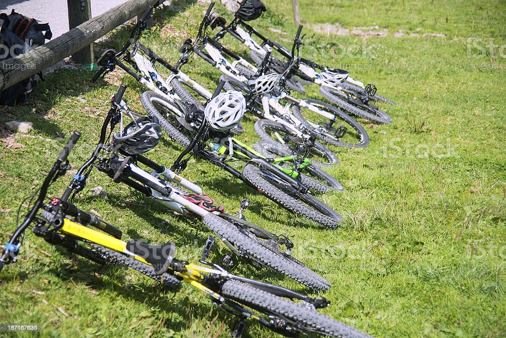 bicycles in meadow mountainbikes stock photo