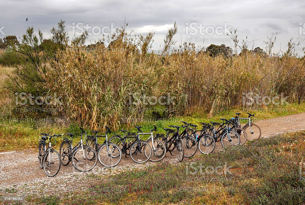 Bicycles parked on a row stock photo