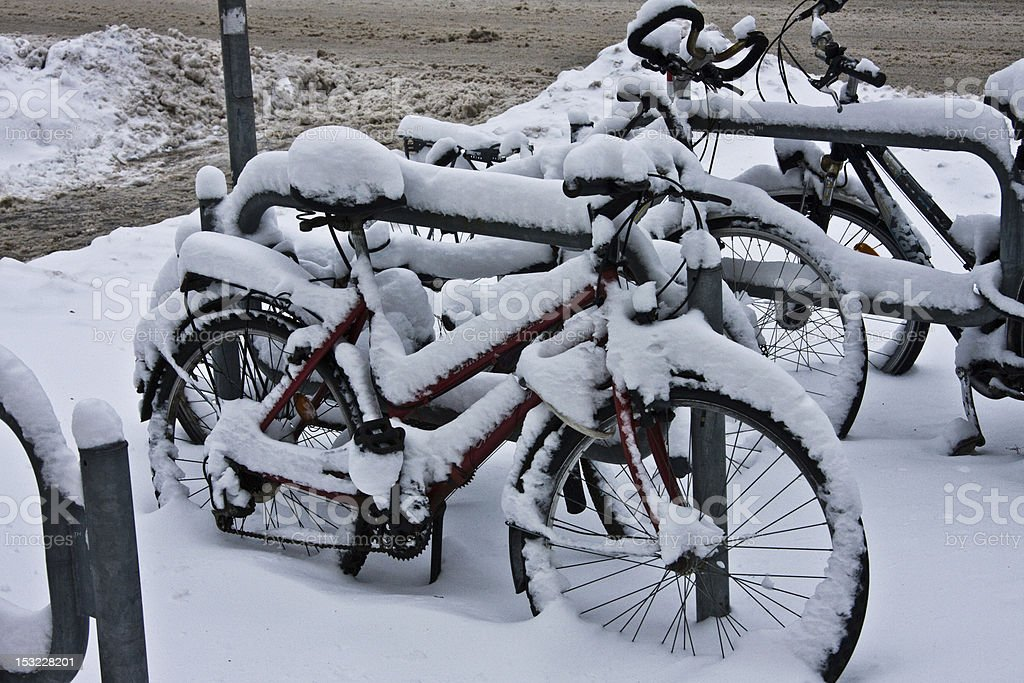 Bicycles were snowed in stock photo