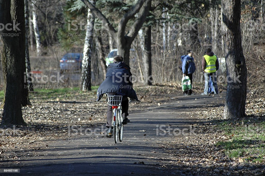 Bicyclist in the woods royalty-free stock photo