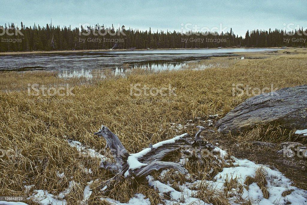 Bierstadt Lake stock photo