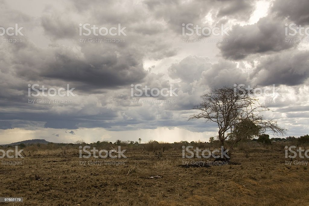 Big African sky royalty-free stock photo