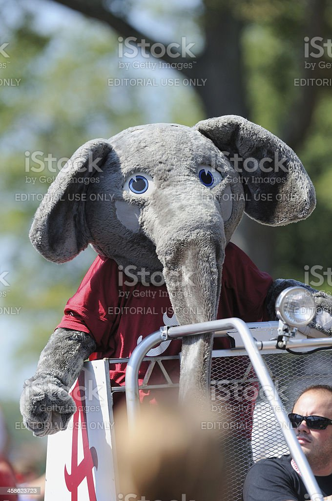 Big Al in homecoming parade stock photo